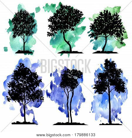 vector set of deciduous trees at watercolor background, hand drawn isolated natural elements