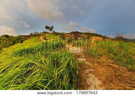 Rural tropical landscapes in Palawan island, Philippines.