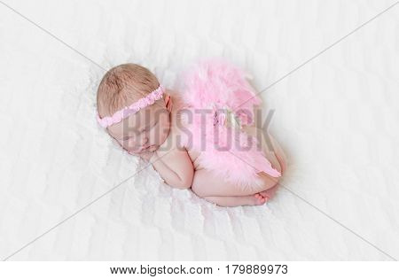 Little baby with bright pink angel wings and a pink hairband curled up sleeping