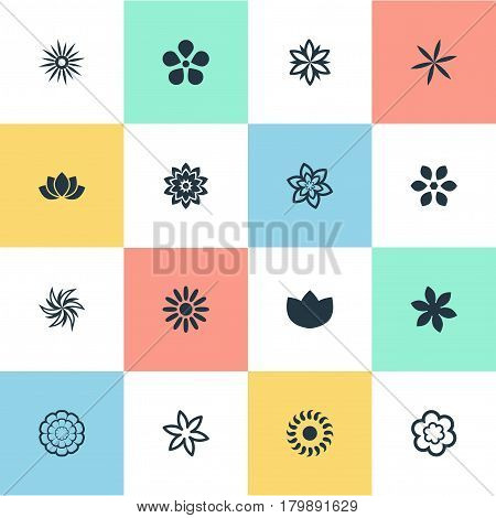 Vector Illustration Set Of Simple Flower Icons. Elements Sword Lily, Morning Glory, Orchids And Other Synonyms Daffodils, Laurel And Orchids.