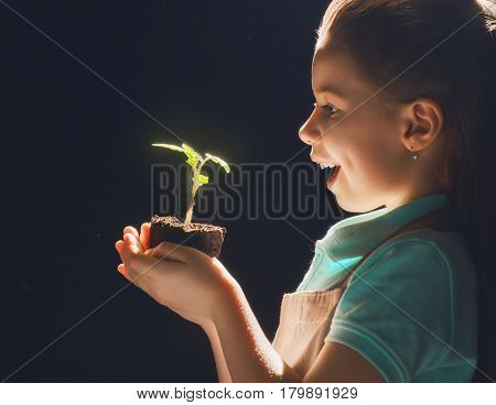 Cute little child girl planting seedlings. Fun little gardener. Spring concept, nature and care.