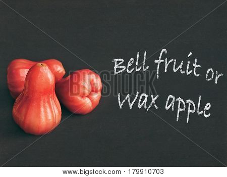 Wax apple or bell fruit. Rose apple or chomphu isolated on black background. Text copy space