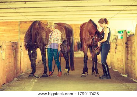 Western ride relations through passion concept. Cowgirl in cowboy hat and woman jockey walking with horses in stable