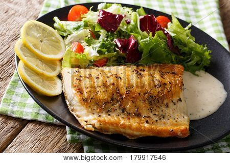Grilled Arctic Char Fish With Mix Salad And Sauce Close-up. Horizontal