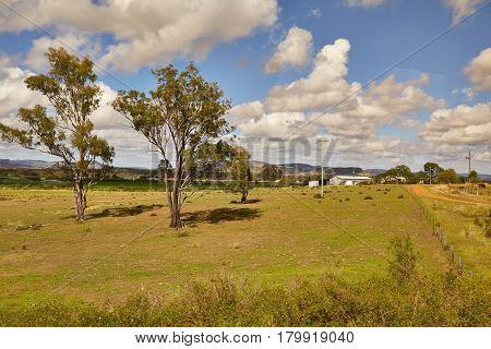 Australian plain landscape from the window of a moving train