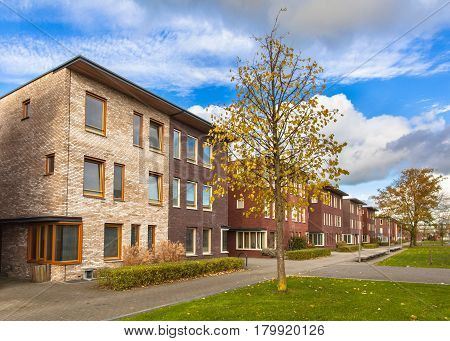 Large Terraced Houses