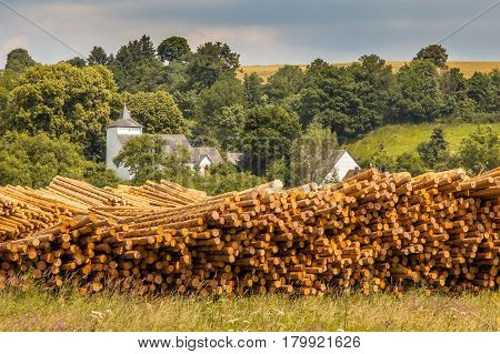 Piles Of Wood Timber Trunks At A Lumber Yard In Germany