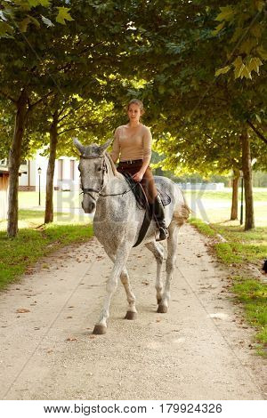Young female rider sitting in saddle of beautiful horse.