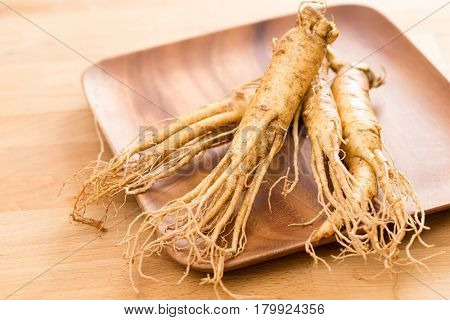 Fresh korean ginseng
