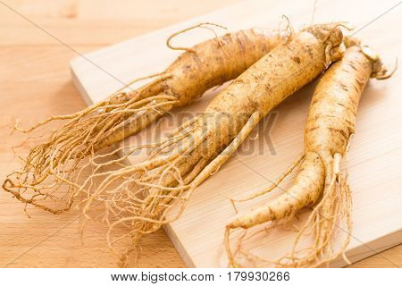 Korean fresh ginseng on wood background