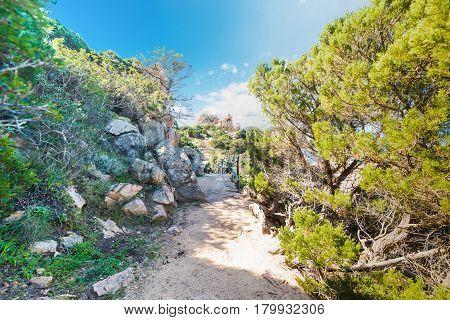a dirt path in Costa Paradiso, Sardinia