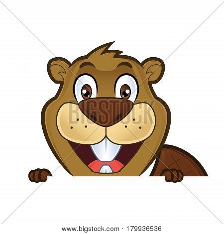 Clipart picture of a beaver cartoon character holding and looking over a blank sign board