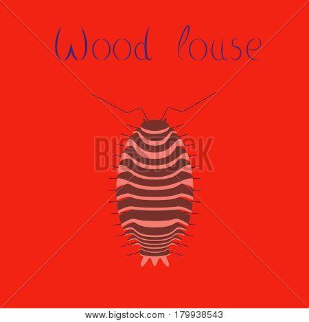 flat illustration on stylish background wood louse