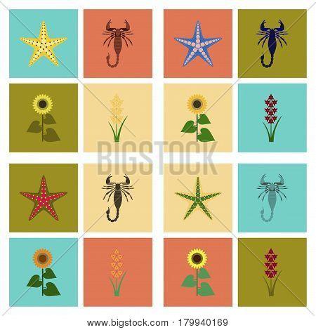 assembly of flat Illustrations nature tropical starfish Scorpio sunflower gladiolus