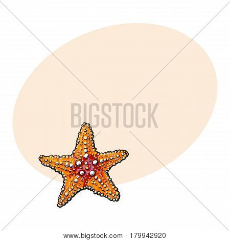 Hand drawn starfish, underwater living organism, sketch style vector illustration isolated on white background with space for text. Realistic hand drawing of tropical underwater starfish
