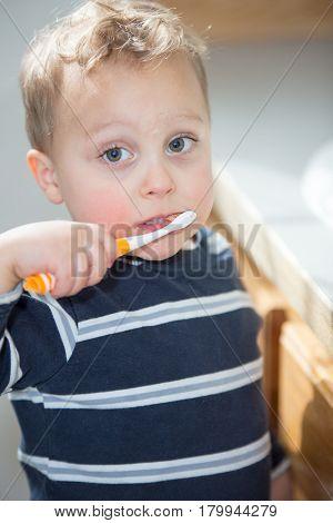 One little toddler boy brushing his teeth.
