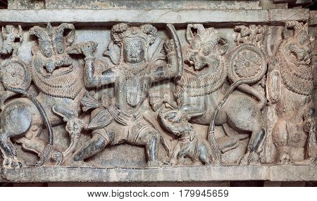 Hunter kills lions on the hunt carved sculpture on historical wall of indian stone temple Hoysaleswara, India. Temple was built in 1150 by king of Hoysala Empire, now Karnataka state.