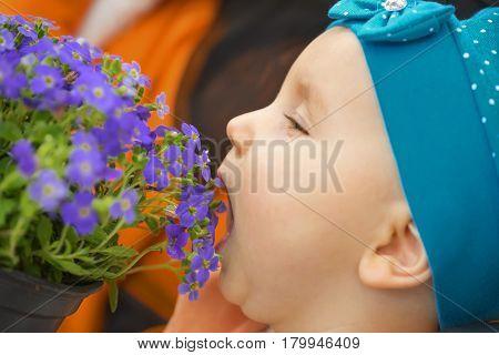 little lovely girl in a blue kerchief, eats beautiful flowers