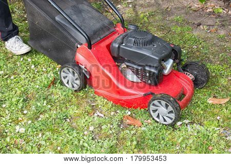 red Mowing the garden with a lawnmower