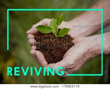 Reviving Go Green Sustainable Concept