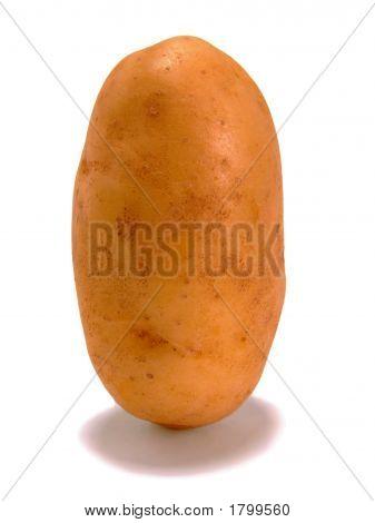 Standing Potato #1