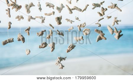 Decoration of coral tree on a tropical beach. The background greenery.Coral decoration  hanging mobile in beautiful tropical island beach  in Maldives.Pieces of coral hanging on wood .
