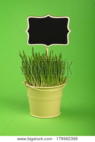 Spring Grass With Black Sign In Bucket Over Green