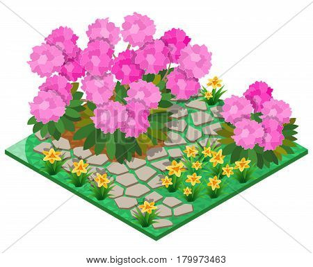 Ornamental garden with rhododendron, lily and stone pavement. 3D isometric view. Vector illustration.