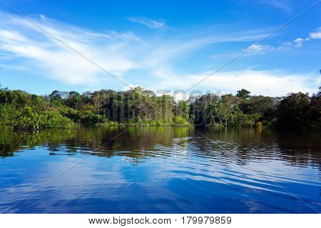 Beautiful landscape of the Amazon rain forest in Brazil