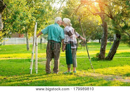 Senior couple kissing, summer. Gardeners holding rake and stepladder. Life, love and labor.