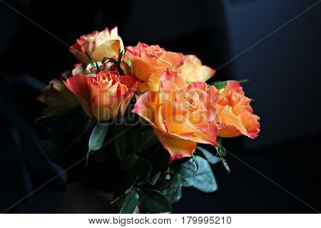 Hand holding a beautiful orange roses bouquet