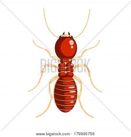 Termite insect colorful cartoon character isolated on a white background