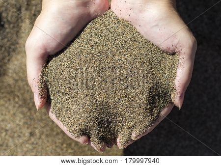 Two hands hold volcanic sand. Sand beach in hands top view photo. SUnshine warmed seaside sand handful. Female hands with beach sand. Summer vacation banner template. Sunny beach day background