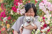 Asia women and dog happy smile hugging her pat is a dog so cute mixed breed with Shih-Tzu Pomeranian and Poodle with beautiful bougainvillea flower poster