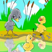 Illustration for fairytale Ugly duckling. Ducks mocked at ugly duckling. poster