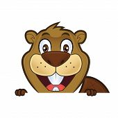 Clipart picture of a beaver cartoon character holding and looking over a blank sign board poster