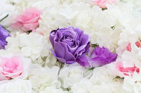The Purple roses in a wedding arrangement