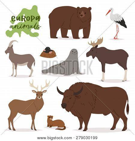Animal Vector Animalistic Character In Forest Bear Deer Elk Of Europe Wildlife Illustration Set Of E