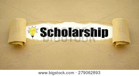 Paper Work And Chalkboard With Scholarship And Light Bulb
