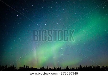 Magical Northern Light In Far Away North Of Alaska, Us Aurora Adventure, Dancing Sky, Lights On The