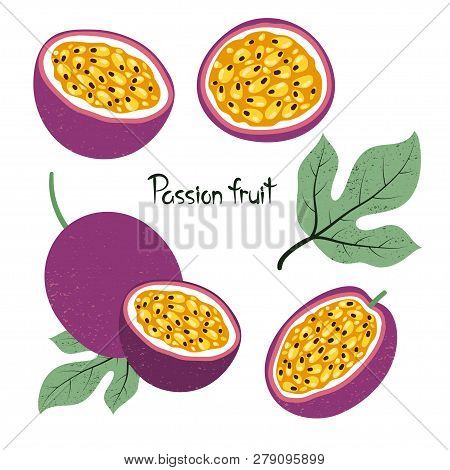 Set Of Passion Fruit Isolated On White. Vector Illustration.