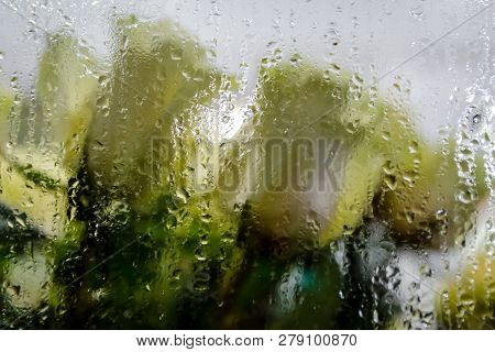 A Bouquet Of White Roses Behind The Steamy Show-window At Night Time