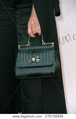 Maye Musk, with a stylish hand bag, attends the premiere for