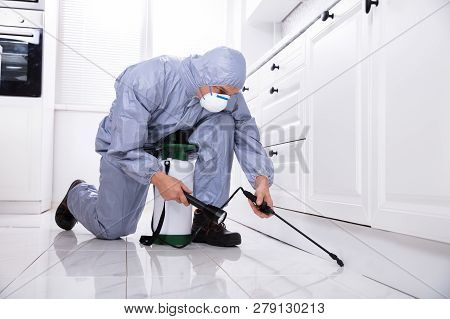 Male Exterminator Wearing Safety Cloths Spraying Pesticide In Kitchen