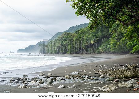 Beach With Nobody On It - Rainforest Background In Corcovado National Park, Costa Rica