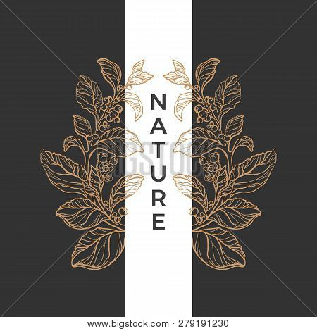 Vector Vintage Ornament Line Art Golden Rich Pattern Text Frame Bouquet, Leaf, Flower, Berry In Wrea
