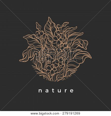 Vector Nature Symbol In Circle Coffee Branch With Realistic Leaf, Flower, Bean, Grain Botanical Art