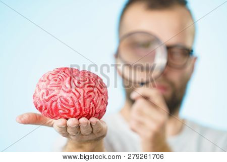 Man Looking At Human Brain