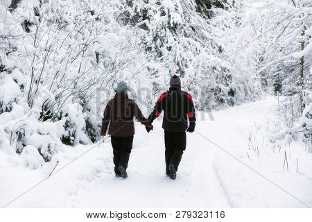 Seniors Walking In Snowy Nature And Holding Hands
