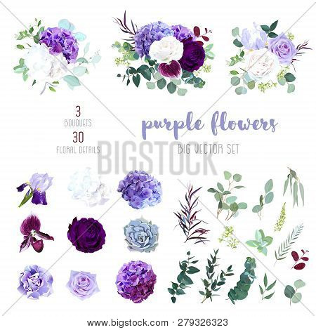 Dark Purple Garden Rose, Plum Orchid, White And Violet Rose, Lilac Hydrangea, Iris, Carnation, Seede